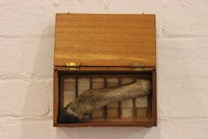 The Undertaker - Deer hoof, vintage microscope slides, box installation. www.leacockgallery.com