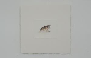 Fausto - watercolor, 10.5 x 8.5cm, SOLD